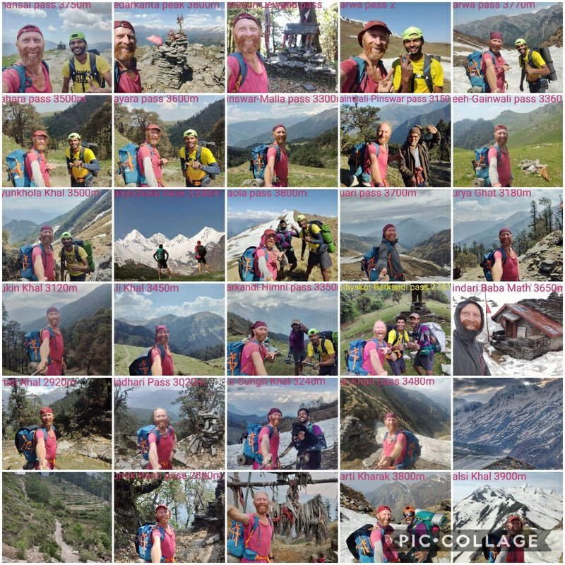 collage-2019-06-07-17_41_37-01644721163622065603. (1)